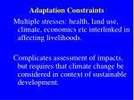adaptation constraints1
