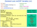 detailed look netcdf variable ncl