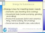 energy for subsistence