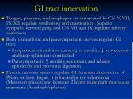 gi tract innervation