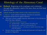 histology of the alimentary canal