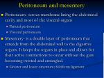 peritoneum and mesentery