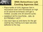 dna detectives lab casting agarose gel