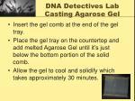 dna detectives lab casting agarose gel1