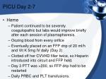 picu day 2 7
