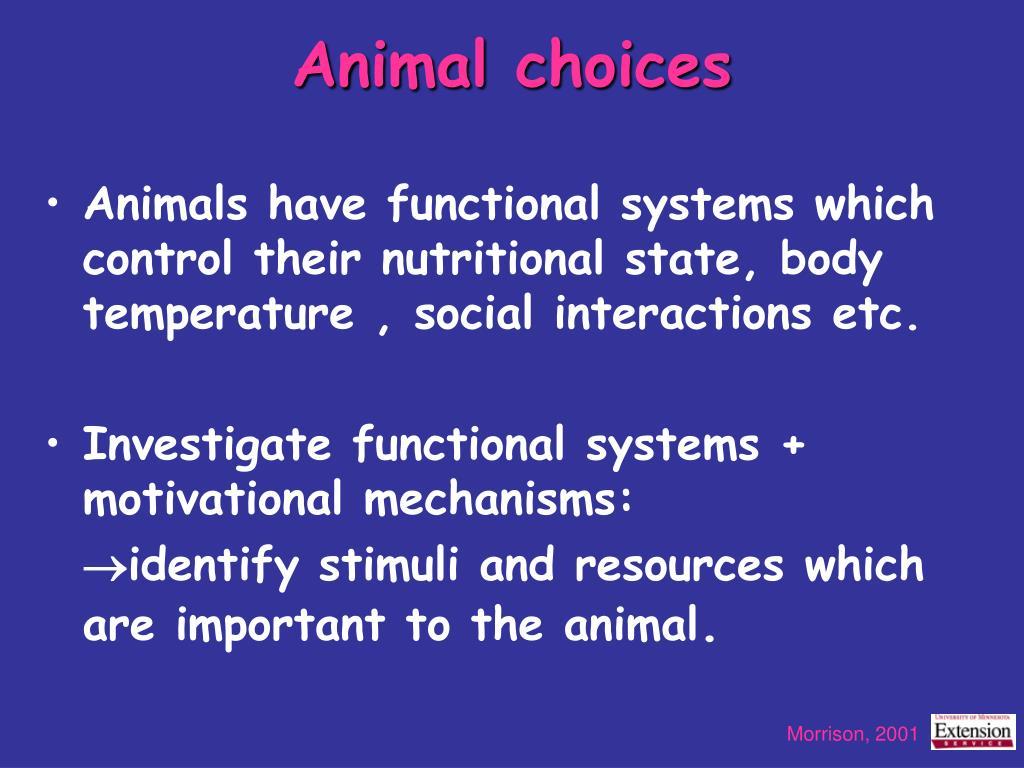 Animal choices