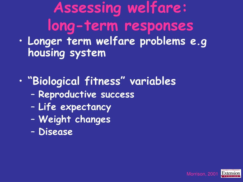 Assessing welfare: