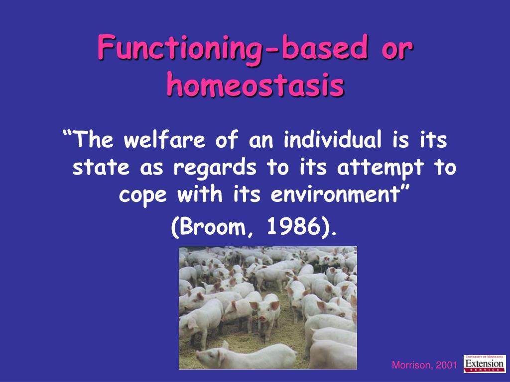 Functioning-based or homeostasis
