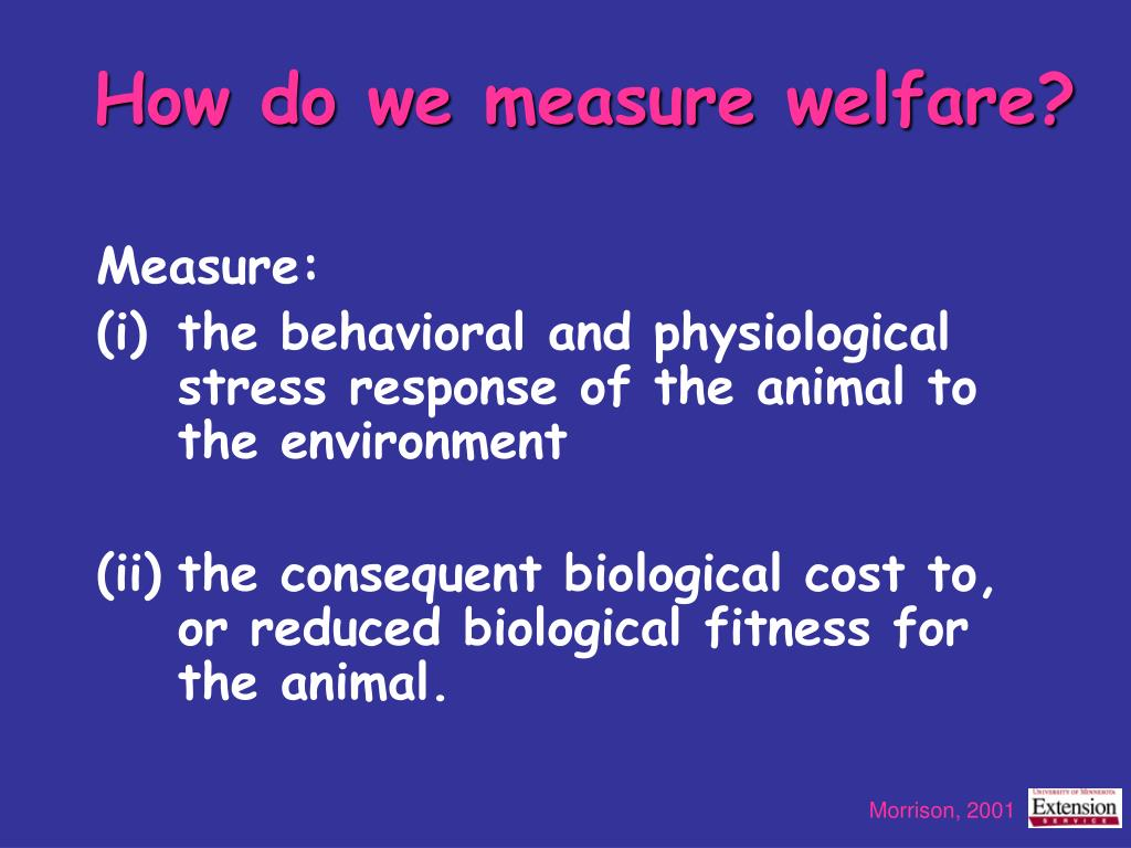 How do we measure welfare?