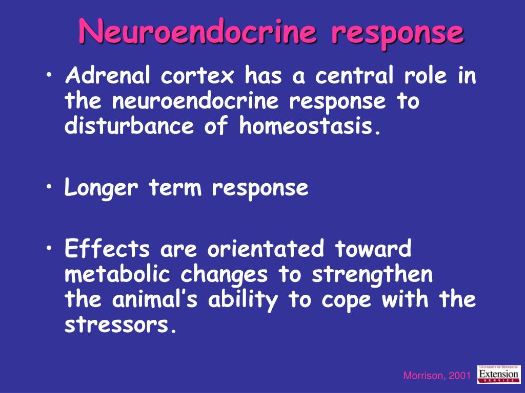 Neuroendocrine response