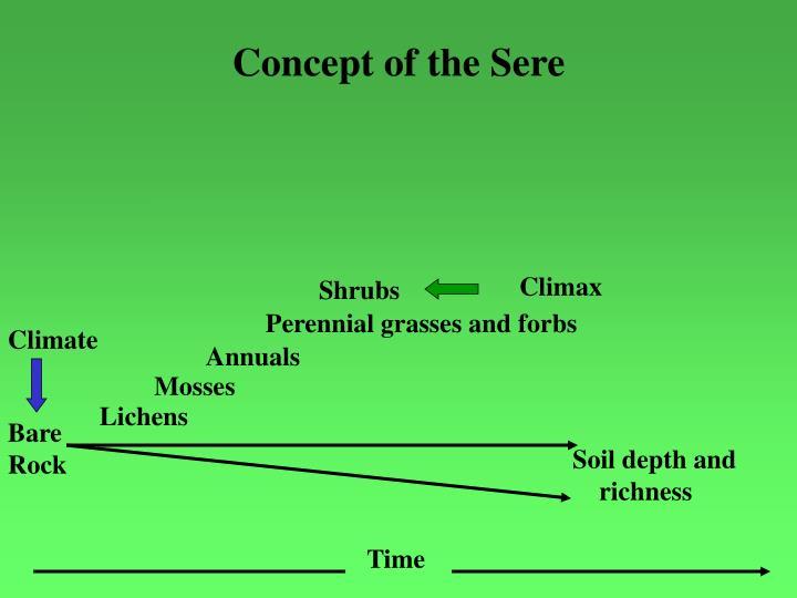 Concept of the Sere