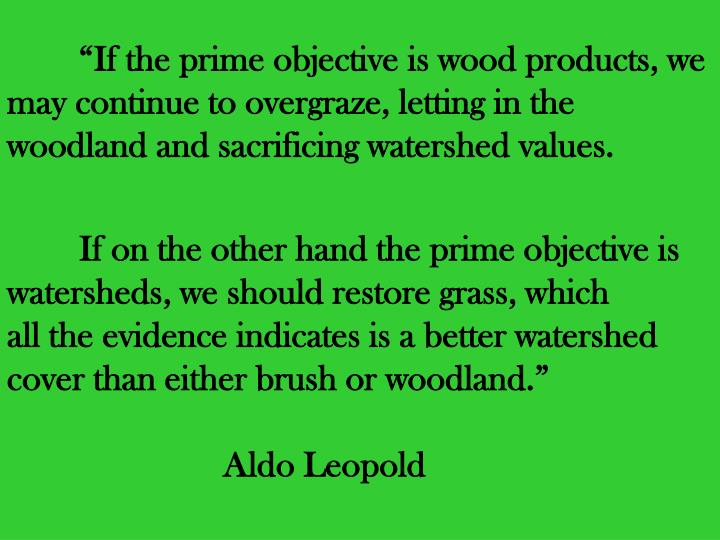 """""""If the prime objective is wood products, we may continue to overgraze, letting in the woodland and sacrificing watershed values."""