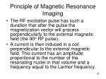 principle of magnetic resonance imaging48