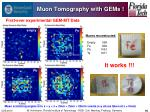 muon tomography with gems
