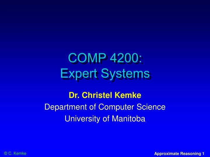 comp 4200 expert systems n.