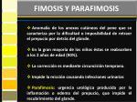 fimosis y parafimosis1