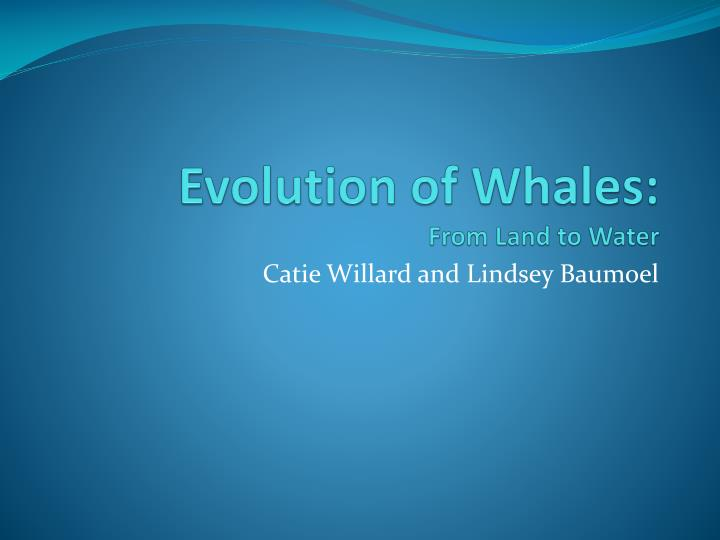 Evolution of whales from land to water