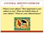 cultural identity exercise