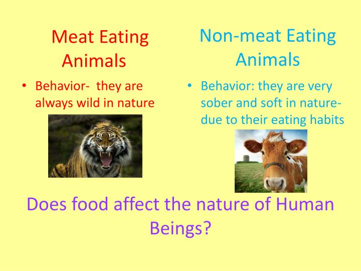 Meat Eating               Animals