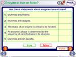 enzymes true or false