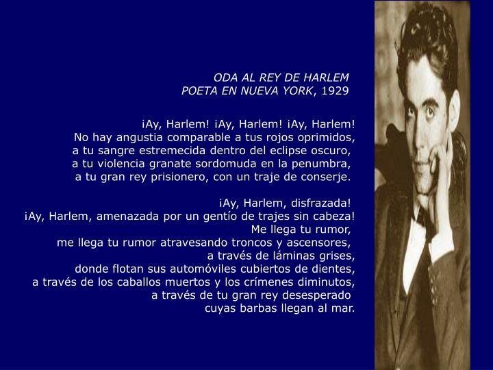 ODA AL REY DE HARLEM