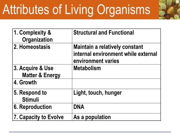 Attributes of Living Organisms