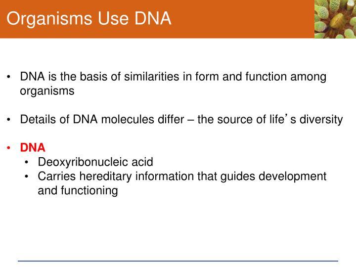 Organisms Use DNA