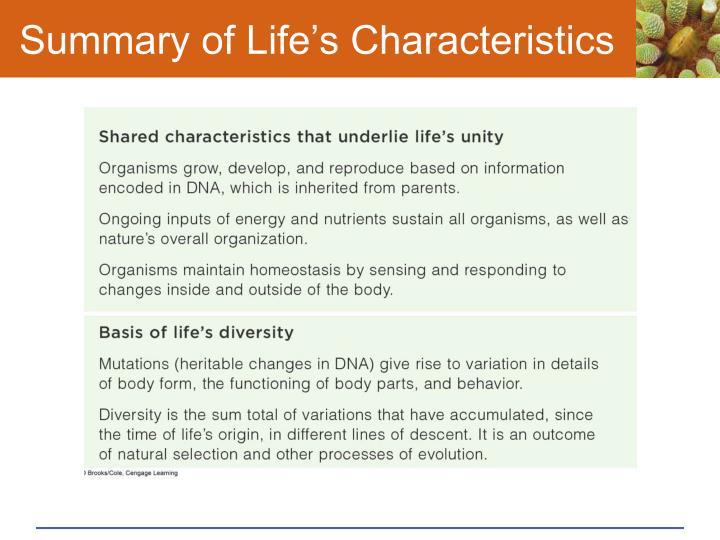 Summary of Life's Characteristics