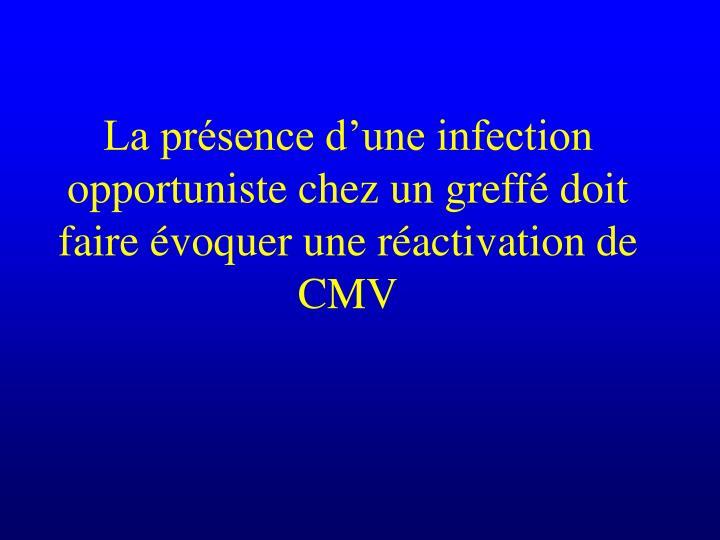La présence d'une infection opportuniste chez un greffé doit faire évoquer une réactivation de CMV