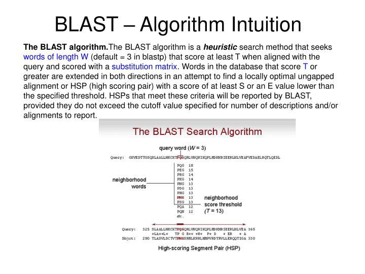 BLAST – Algorithm Intuition