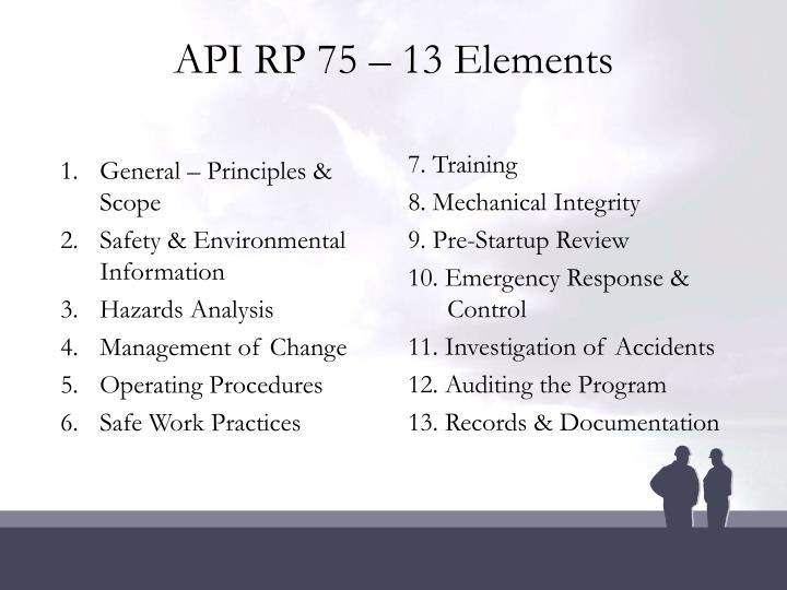 Api rp 75 13 elements