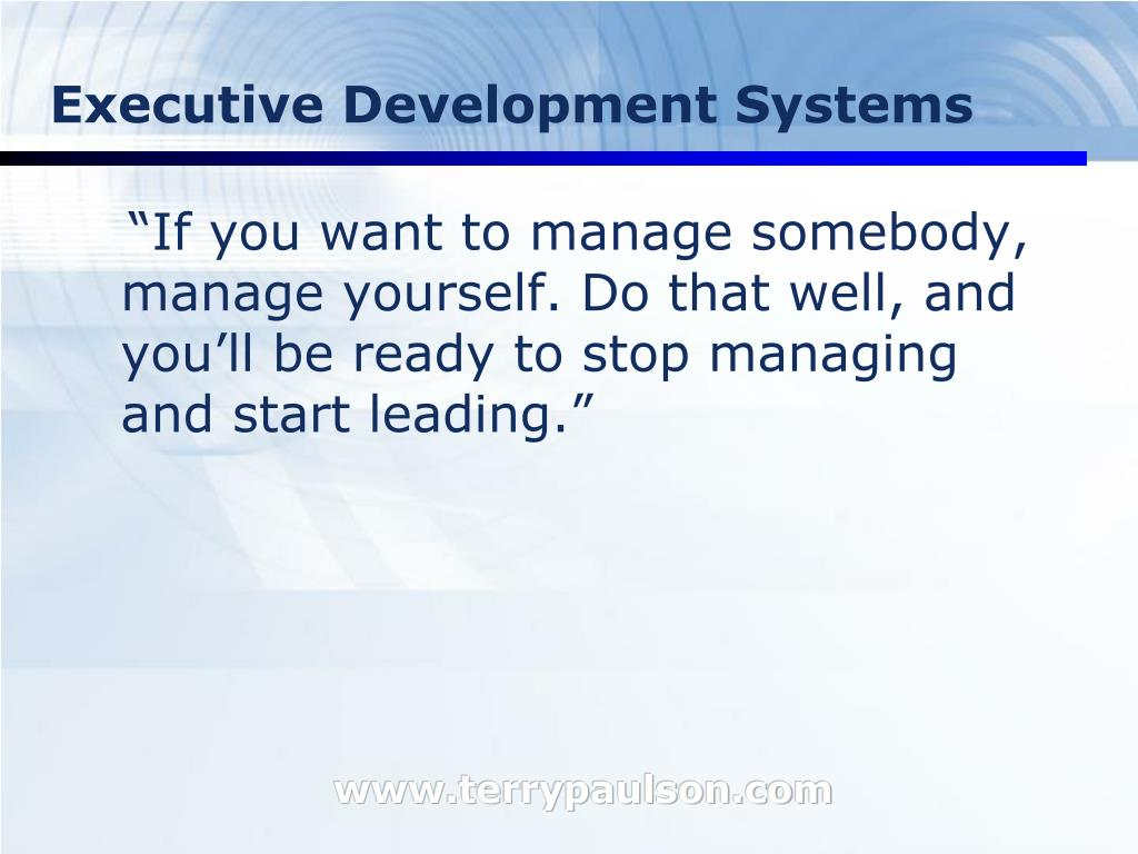 Executive Development Systems