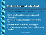 metabolism of alcohol