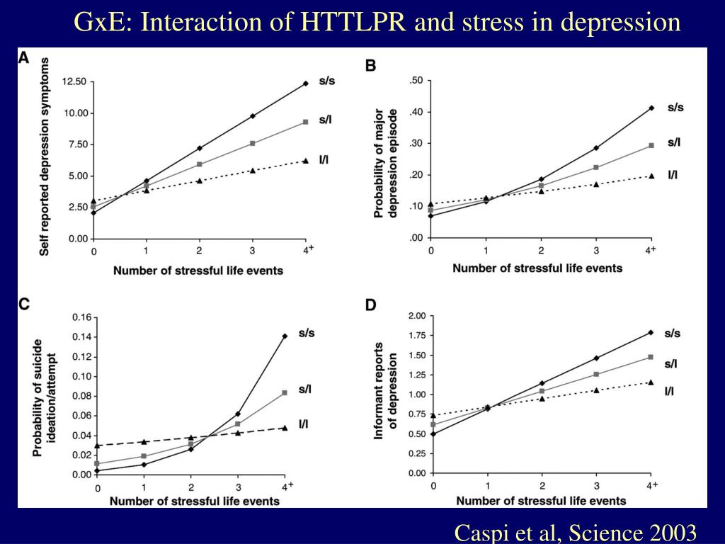GxE: Interaction of HTTLPR and stress in depression