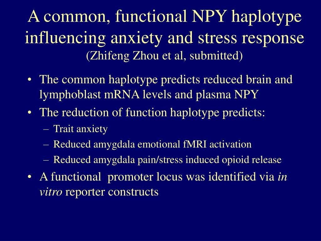 A common, functional NPY haplotype