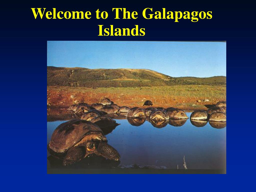 welcome to the galapagos islands l.