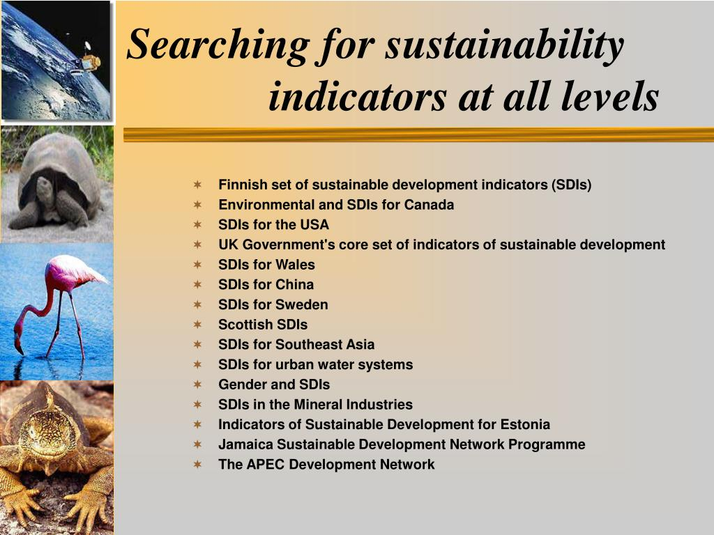 Searching for sustainability indicators at all levels