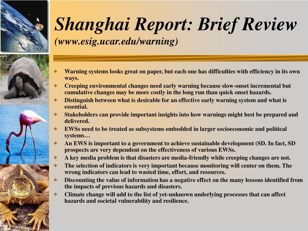 Shanghai Report: Brief Review