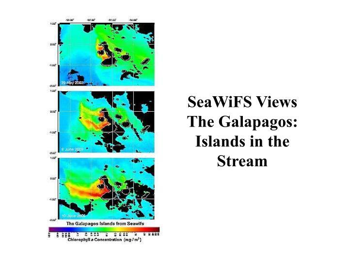 SeaWiFS Views