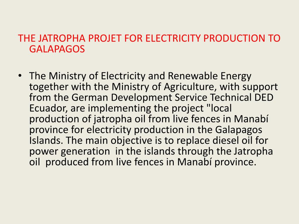 THE JATROPHA PROJET FOR ELECTRICITY PRODUCTION TO GALAPAGOS