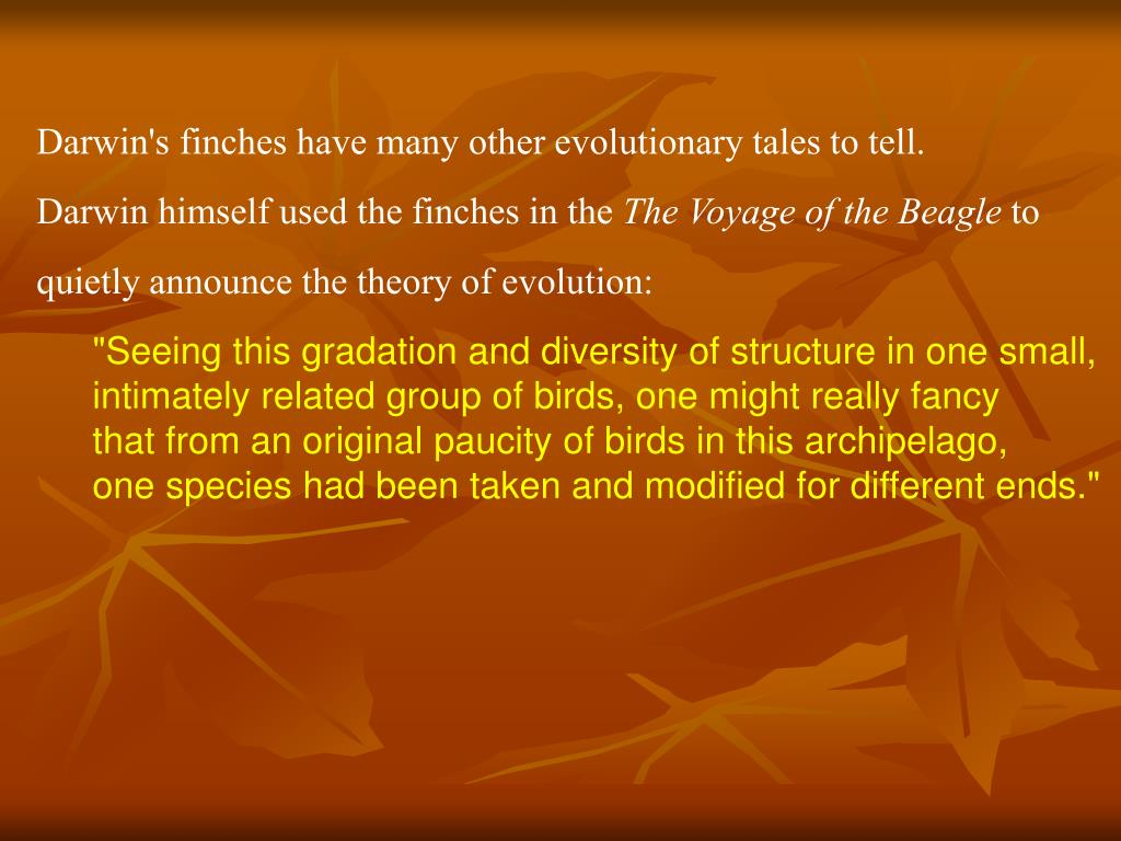 Darwin's finches have many other evolutionary tales to tell.