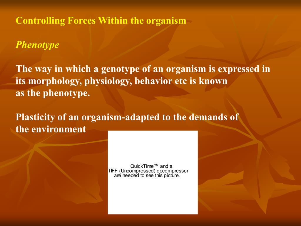 Controlling Forces Within the organism