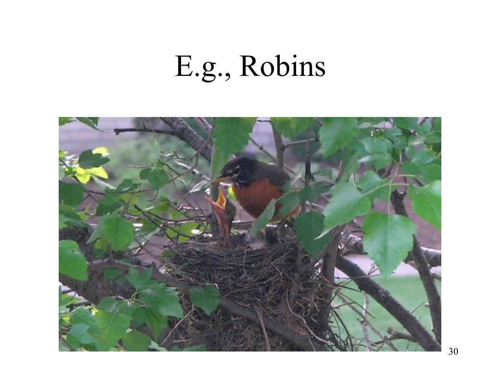 E.g., Robins
