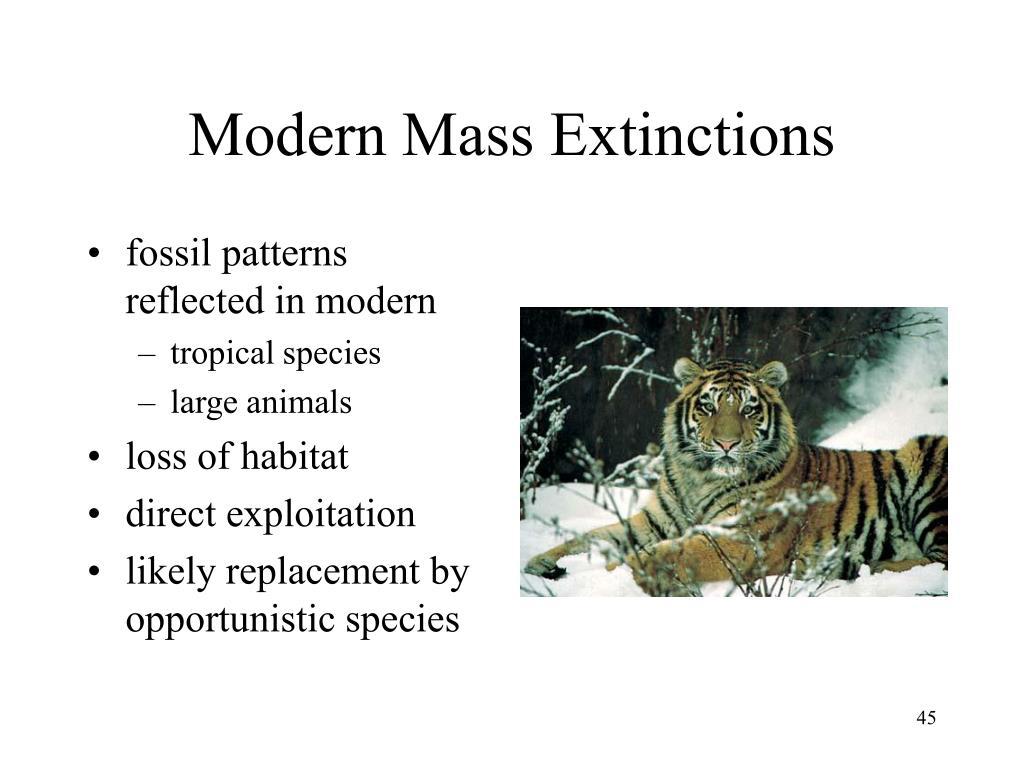 Modern Mass Extinctions