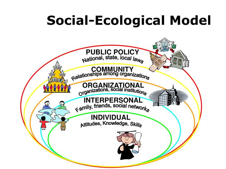 social ecology essay What is social ecology murray bookchin murray bookchin has long been a major figure in anarchlst and utopian political theory, theory of technology, urbanism, and the philosophy of nature he is the cofounder and director emeritus of the institllte for social ecology his many books include toward an ecological society, the ecology of.
