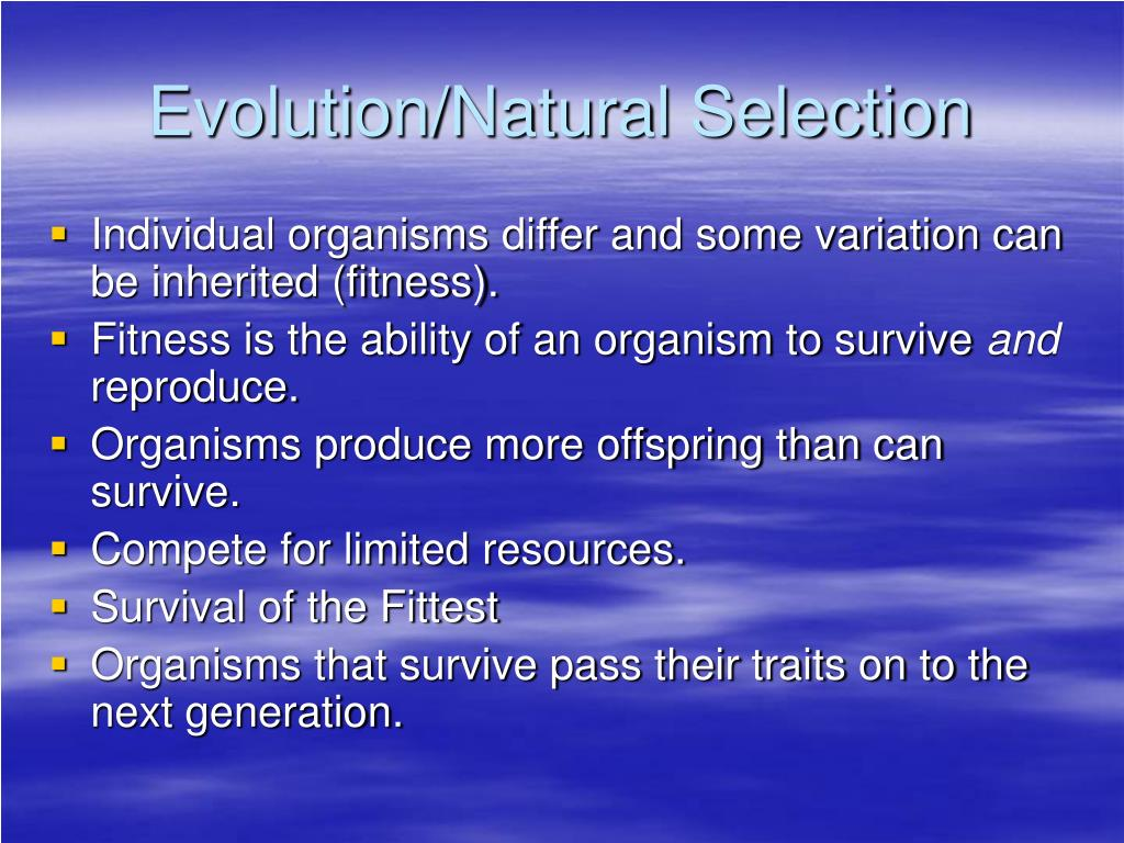 Evolution/Natural Selection