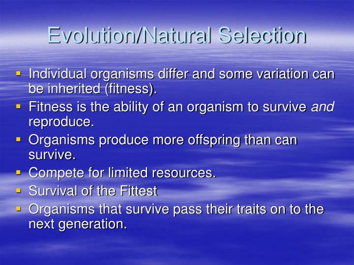 Evolution natural selection