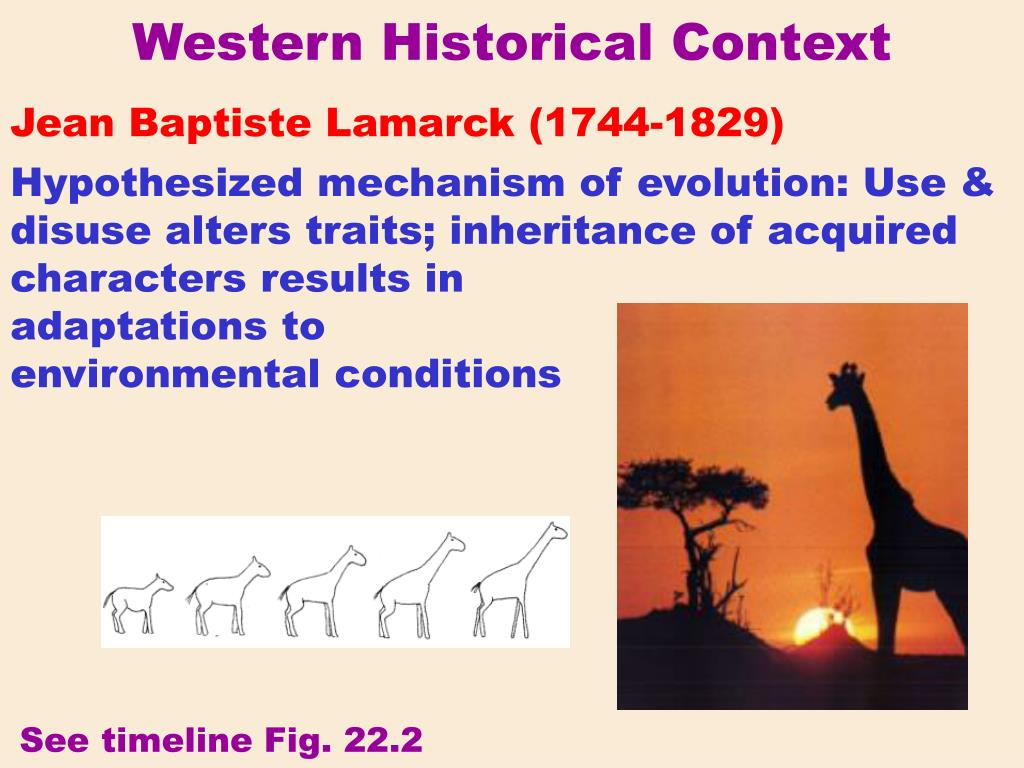 Western Historical Context