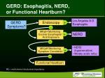gerd esophagitis nerd or functional heartburn
