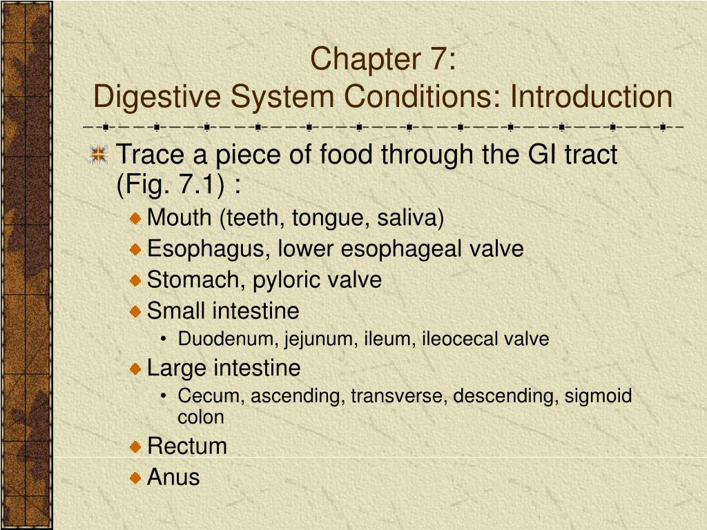 chapter 7 digestive system conditions introduction l.
